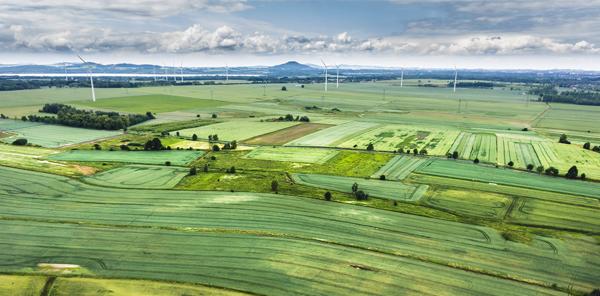 Comment replacer l'innovation au cœur de la filière agro-alimentaire ?